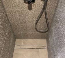 Appareillage de la salle de bain avec mitigeur thermostatique et pomme de douche hansgroe
