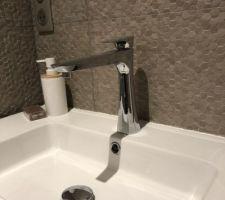 Appareillage de la salle de bain