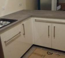 évier + meuble poubelle + lave vaisselle encastrable