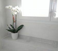 Ma jolie orchidée (en mode fière parce non seulement elle encore en vie lol, mais elle fait des fleurs ^-^)