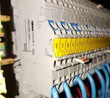 Bornier wago 2003-7646/7642 pour la connexion des circuits de la maison au tableau domotique.