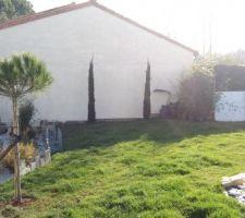 2 Cyprès, prépa Gabion et un Pin Parasol...voici les travaux de ce jour Restera à planter les bambous non traçant lorsque la haie de thuyas aurais été enlevé (au fond à droite)