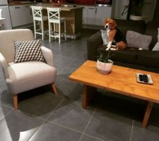 Nouveau fauteuil dans le salon