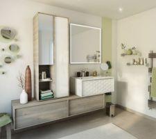 Salle de bains enfant/invité avec du rouge bordeaux à la place Double vasque, baignoire et douche 0.8*1