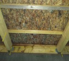 19-12-2017 Charpente humide suite a défaut d'étanchéité, sous toiture revêtue de champignons suite défaut de ventilation.