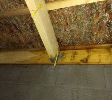 14-12-2017 Charpente humide suite a défaut d'étanchéité, sous toiture revêtue de champignons suite défaut de ventilation.