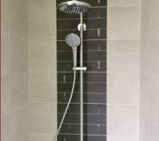 Colonne de douche SDE zone vie.