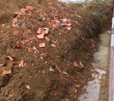 Arrière de la maison : débris et eau stagnante