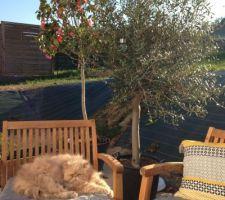 La terrasse est prête pour l'été!