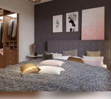 Chambre + Dressing RHINOV