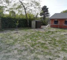 La cabane de jardin terminée et un peu d'herbe !