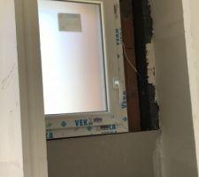 Fenêtre WC verre fumé