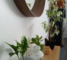 Plantes et miroir