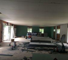 Mise en place du plafond et des murs de plâtre