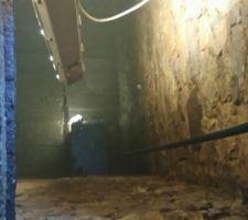 La trappe de la citerne  prof 4 mètre 1,80 mètre d eau surface 5x5 mètre