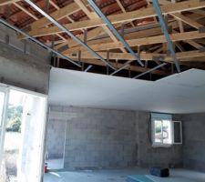 Pose du faux plafond