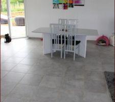Salle à manger (idem table et chaises seront remplacées quand on aura le budget ) :) On voit bien la peinture avec les paillettes