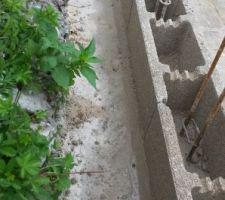 Le premier rang est posé avec un bon raccord en ciment sur les fondations.