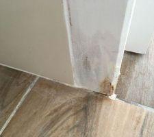 Les  moisissures dues probablement aux infiltrations d'eau sous le vide sanitaire, et on est en période sèche...