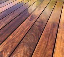 Vu Le peu de temps que pend le traitement du bois  J?ai refais une couche avant la pleine saison
