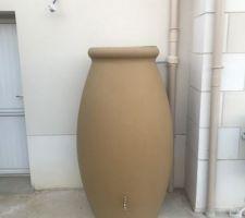 Récupérateur d?eau 1000 litres