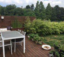 Vue générale de la terrasse, les bambous ont eu une superbe croissance cette année.