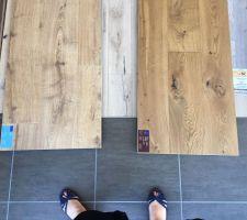 Nos choix de parquets pour le Rez (contre-collé) et l'étage (Stratifié). Les deux couleurs chêne cannelle