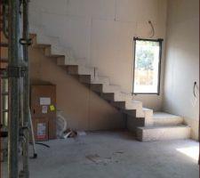 Escalier à crémaillère brut