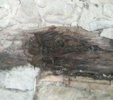 Le linteau bois fait la gueule