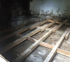 Arrachage du plancher de la pièce principale actuelle qui deviendra la future chambre principale. Les lambourdes sur le vide sanitaire.