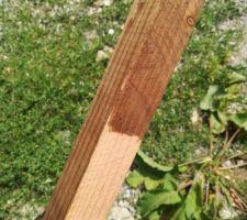 Teinture du bois au Brou de noix