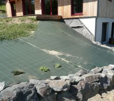 En bas du talus de la terrasse , d'autres couvre-sols