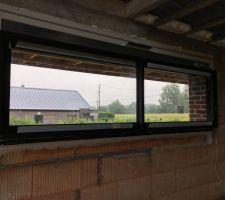 Fenêtre du salon