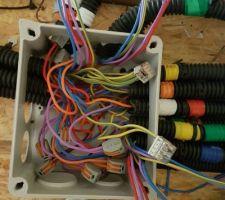 Debut de la pose du cablage electrique.