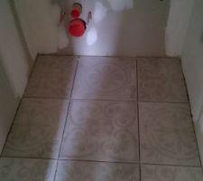 Carrelage des WC du RSC, PORCELANOSA DECOR CHAMBORD ACERO