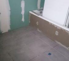 Carrelage salle de bain PORCELANOSA FERROKER ALUMINIO