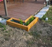 Une jardinière d'angle