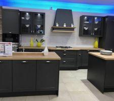 Nous avons choisi le modèle CREDO de chez envia cuisine. La cuisine sera en forme de L et il n'y aura pas de meuble haut.