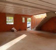 Rdc.vu sur escalier, porte entree en bas de l escalier, fenstron toiletteet fenetre cuisine . porte fenetre accedant sur un coté du