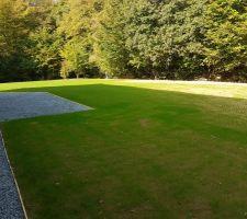 Voilà la vue d'ensemble du jardin depuis la chambre d'amis.
