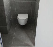 WC suspendu, Empora de chez Villeroy et Boch manque la plaque de commande à poser