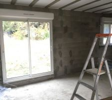 Porte fenêtre du salon et fenêtre de la cuisine