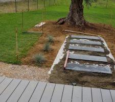 Plantation autour de l'olivier et pose des dalle en ardoise