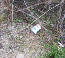 Aperçu d'un des nombreux pots de yaourts abandonnés parterre sur notre terrain