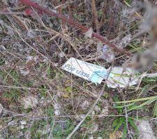 Aperçu d'un des emballages carton laissés sur notre terrain