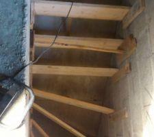 Pose coffrage escalier sous sol