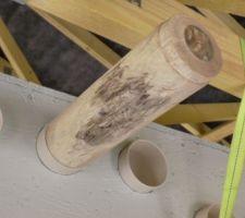 Le manchon prêt à être gonflé par l'outil en bois après chauffage.