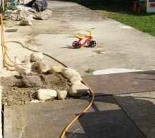 Mais... Mais... ?! Des poules ont envahi le jardin! :D