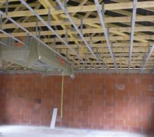 Les fourrures sont posées de niveau au plafond.