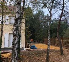 Vue sur jardin et clôture bois
